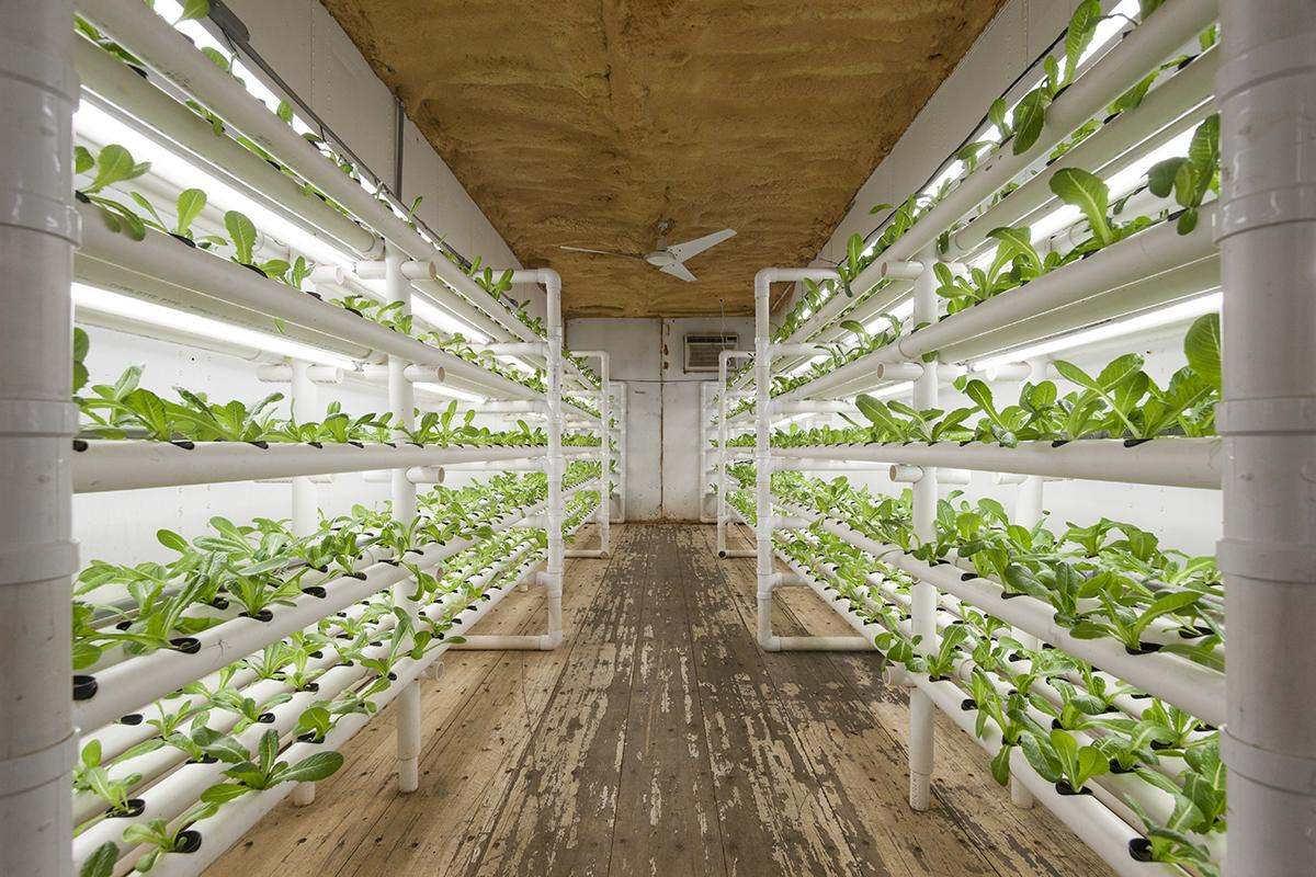 Can a used 20 foot shipping container be used to grow food for Indoor gardening machine
